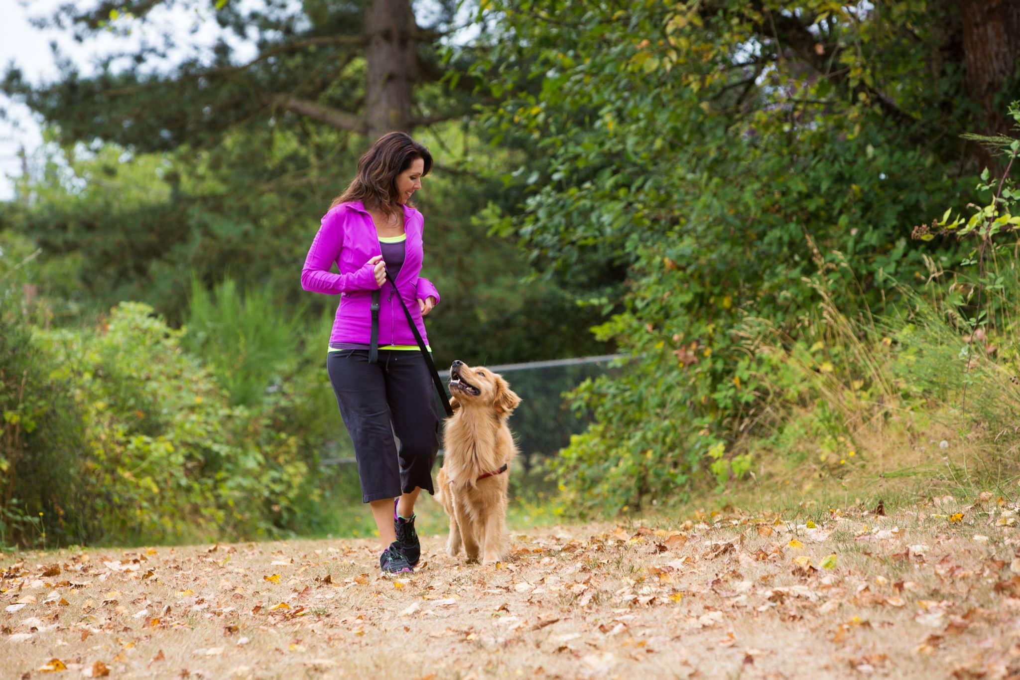 Woman in purple zip up walking dog on trail outside